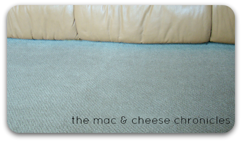 Pinterest Win Carpet Cleaner The Mac And Cheese Chronicles